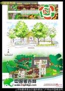 陕西省柞水溶洞旅游区银杏庄园景观设计_银杏人文_银杏文化